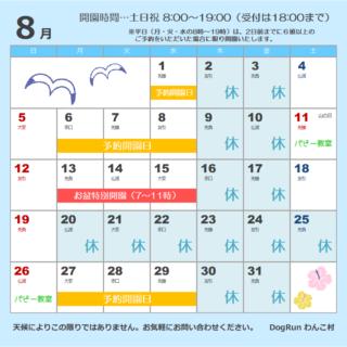 8月のカレンダーを更新しました🌻