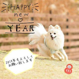 新年あけましておめでとうございます🎍