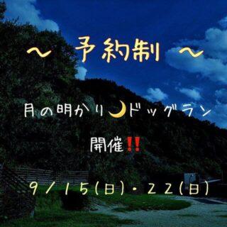月の明かりドッグラン開催(予約制)