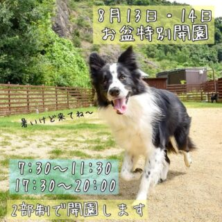 8月13日(木)14日(金)はお盆の特別開園日!