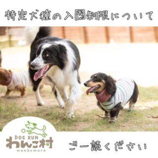 特定犬種の入園制限について(利用規約改正)