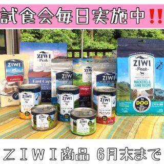 ZIWIプロヴェナンスシリーズ取り扱い開始キャンペーン