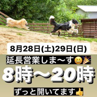 8月28日(土)・29日(日)は延長営業します!