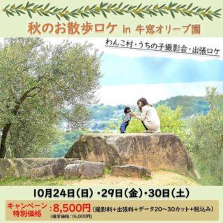 秋のお散歩ロケ in 牛窓オリーブ園